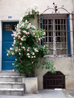 blue door and pink climbing roses - (via le Petit Bijou… a village house in Saint Remy de Provence… | French Essence)