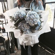 Blue Hydrangeas Cold Cash Divine