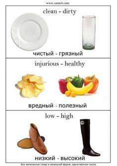 Russian ✍