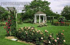 where I got married.......so beautiful...allentown rose garden | the malcolm gross memorial rose garden in cedar creek park , allentown ...