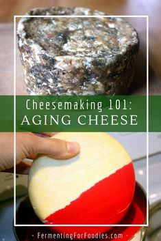 "Aging hard cheese involves three different types of rind: bandaged, washed or waxed. It also needs a ""cave"" to maintain humidity and temperature. Learn all about aging hard cheese. Cheese Wax, Aged Cheese, Goat Milk Recipes, Cheese Recipes, Dairy Recipes, Cheese Tasting, Cheese Lover, Cooking Cheese, Types Of Cheese"