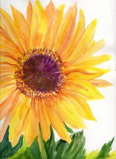 Big Sunflower Watercolors Paintings Original   by SharonFosterArt