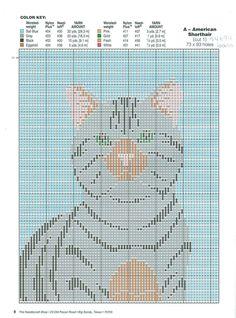CAT PORTRAITS 8