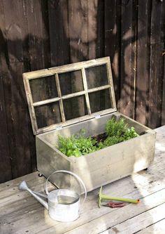 DIY herb garden from an old window. Container Herb Garden, Diy Herb Garden, Succulent Gardening, Veg Garden, Easy Garden, Gardening For Beginners, Gardening Tips, Patio Pergola, Balcony Flowers