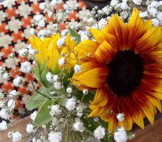 #Jaffa #fleaMarket Colorful Flowers, Israel, Old Things, Plants, Beautiful, Plant, Planets