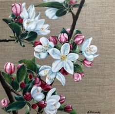 Buy Cherry blossom, Oil painting by Hanna Kaciniel on Artfinder. Discover thousands of other original paintings, prints, sculptures and photography from independent artists. Original Art, Original Paintings, Spring Is Coming, Dark Backgrounds, Oil Painting On Canvas, Cherry Blossom, Artworks, Sculptures, Artists
