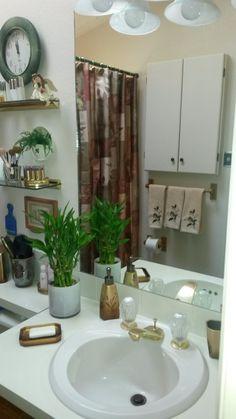 Showing off bathroom's new paint job and new look minus shower doors