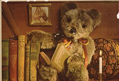 Teddy Bear and books c. 1984