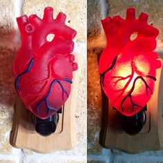 Anatomical Heart Nightlight Goth Home Decor, Anatomical Heart, Gothic House, Heart Art, Sacred Heart, Cool Walls, My New Room, Decoration, Wall Lights