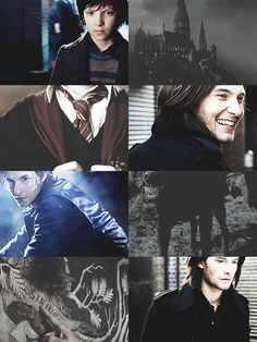 Padfoot - Sirius Black (portrayed by the  Ben Barnes)
