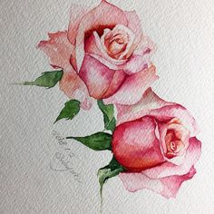 Watercolor roses by lakeisha Watercolor Rose, Watercolor Cards, Watercolor Paintings, Watercolors, Watercolor Projects, Plant Drawing, Rose Art, Art Sketchbook, Botanical Art