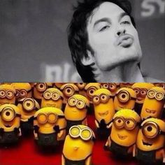 This is me every Thursday night it seems! Oh Ian!