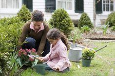 Gardening Basics – How to Start a Garden