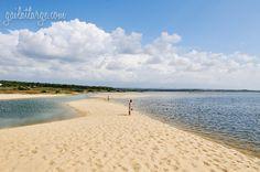 Lagoa de Santo André along the Costa Vicentina (Alentejo, Portugal) (2)