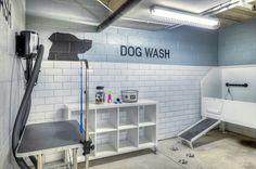 Modern Dog Washing Station Throughout Pet Friendly Yelp Remodel 15 Dog Grooming Salons, Grooming Shop, Pet Grooming, Dog Bathing Station, Pet Washing Station, Pet Cafe, Dog Spa, Pet Friendly Apartments, Pet Hotel