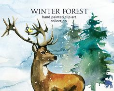 Pine Trees Deer Watercolor Clipart Fir Trees PNG Christmas