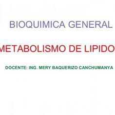 BIOQUIMICA GENERAL METABOLISMO DE LIPIDOS DOCENTE: ING. MERY BAQUERIZO CANCHUMANYA   GRASAS • 25 – 30% de la Dieta • TRIGLICERIDOS 90% • FOSFOLIPIDOS Leci. http://slidehot.com/resources/metabolismo-grasas-2015.51042/