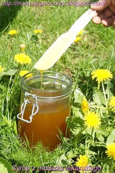Mama i Pomocnicy: Syrop z mniszka lekarskiego Home Remedies, Natural Remedies, Simple Syrup, Food Design, Superfoods, Food And Drink, Alcohol, Herbs, Healthy Recipes