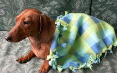 Blue and Green Plaid Dog Chewing Blanket by MuttMania on Etsy, $10.00
