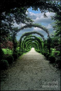 ✯ Arboretum - Oyster Bay - Long Island, NY