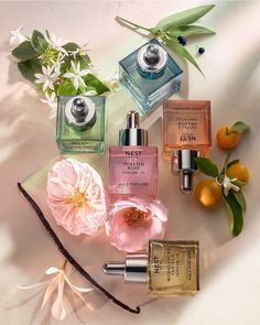 Nest Fragrances just dropped a new, must-have collection of five perfume oils, and you'll want them all 🌿🍊🌸 Shop fragrances with trending notes like vanilla, citrus, and rose—only at Sephora. Which scent are you most excited to try? Vanilla Perfume, Rose Perfume, Perfume Oils, Perfume Bottles, Vanilla Oil, Vanilla Orchid, Madagascar Vanilla, Blonde Wood