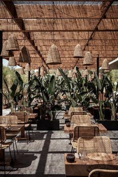 Casa Cook Ibiza is a lifestyle boutique hotel: a cosmopolitan and stylish resort by Thomas Cook. Outdoor Restaurant Design, Ibiza Restaurant, Decoration Restaurant, Restaurant Interior Design, Summer House Restaurant, Bistro Interior, Hotel Ibiza, Outdoor Cafe, Outdoor Dining