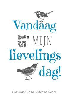 Vandaag……. www.vivier.nl