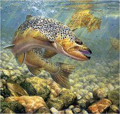~V_Gone fishing~M Susinno
