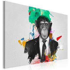 Obraz - Pan Małpa