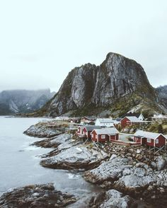 life above the arctic circle