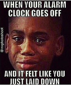 Best Funny Memes Kevin Hart Thug Life Truths 22 Ideas Best Funny Memes Kevin Hart Thug Life Truths 22 Ideas The post Best Funny Memes Kevin Hart Thug Life Truths 22 Ideas & Funny appeared first on Galia Sto. Funny Quotes, Funny Memes, Sarcastic Memes, Lit Quotes, Sassy Quotes, I Love To Laugh, Work Humor, Work Memes, Just For Laughs