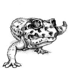 An amazing 3D tattoo design of a sneaking gecko.