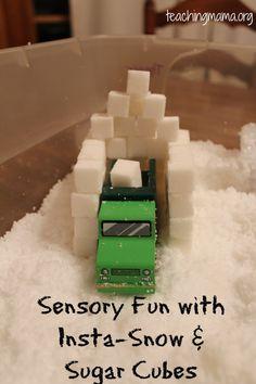 Sensory Tub with Insta-Snow & Sugar Cubes!