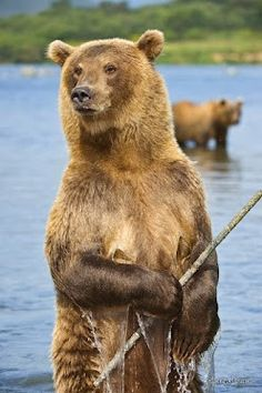 Hey Fred! - - there's lots a fish over here man.. grab your pole