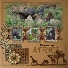 I_Dream_of_Africa_Layout-ss