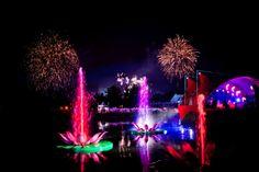 #Tomorrowland 2012 Magic