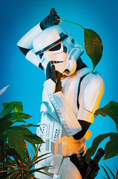 Star wars trooper with plant esthetic by Helle Navratil Photography Creative Portraits, Joker, Star Wars, Batman, Superhero, Stars, Photography, Plant, Fictional Characters