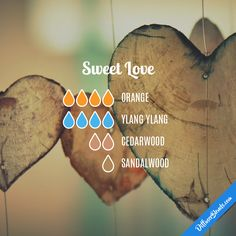 Sweet Love — Essential Oil Diffuser Blend