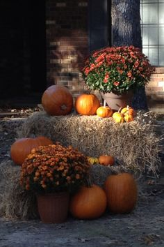 Fall yard decor http://barnaclebill.hubpages.com/hub/decoratingyardfallhalloweentutorialstips