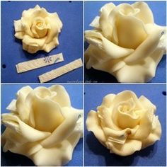 Rose tutorial