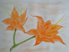 zarte exotische Blüten