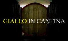 Sabato 20 aprile alle 17 presso la cantina Villa Gianna di Latina, Roberto Tartaglia, presenterà il suo ultimo romanzo dal titolo Lo scacciapensieri.