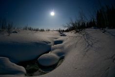 Moonlight at Kaukonen, Lapland, Finland
