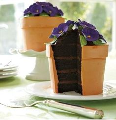 Beautiful Flower Pot Cake. This would be perfect for my mom's birthday cake... can I bake it in a flower pot?  maybe one carefully lined in parch paper, so no nasty chemicals get into the cake.