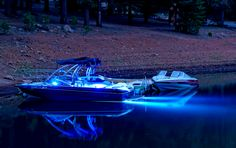 Lifeform LED offers a complete range of extremely bright underwater LED boat lighting products and easy to install LED dock light kits. Our underwater lights are durable, bright, and very efficient! Underwater Boat Lights, Led Boat Lights, Malibu Boats, Dock Lighting, Ski Boats, Wakeboarding, Bass Fishing, Water Features, Cool Pictures