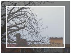 Dům holubí