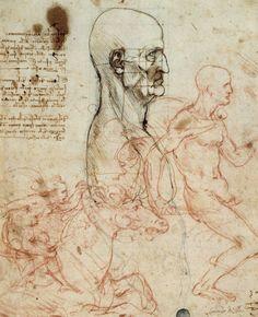 Leonardo da Vinci. Tronco de un hombre de perfil con esquema de proporción, estudio de caballo y caballeros.
