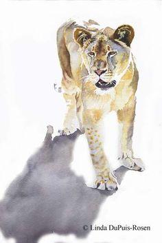 Linda DuPuis Rosen - Wildlife Art in Watercolor - Gallery - Wildcats of Africa - Lioness Alone Watercolor Paintings Of Animals, Lion Painting, Wildlife Paintings, Watercolor Artwork, Watercolor Artists, Wildlife Art, Animal Paintings, Animal Drawings, Horse Drawings