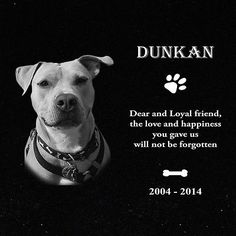 Personalized Pet Headstone, tombstone Laser Engraved on the Grave Marker Granite in Pet Supplies, Pet Memorials & Urns Pet Memorial Stones, Dog Memorial, Pet Headstones, Pet Grave Markers, Pet Cemetery, Pet Memorials, My Animal, Dog Pictures, Laser Engraving