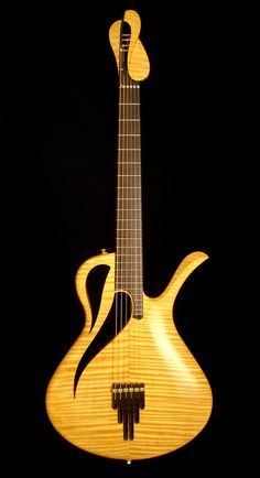 Rolf Spuler Avalon Paradis | Advanced acoustic-electric guitar, improved design including headstock.